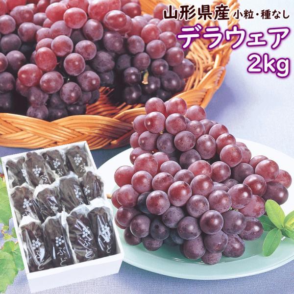 ぶどう デラウェア 送料無料 山形産 デラウェア 2kg(10〜12房) 秀品|yamagata-kikou