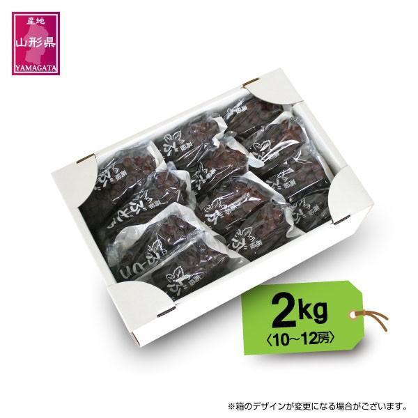 ぶどう デラウェア 送料無料 山形産 デラウェア 2kg(10〜12房) 秀品|yamagata-kikou|05