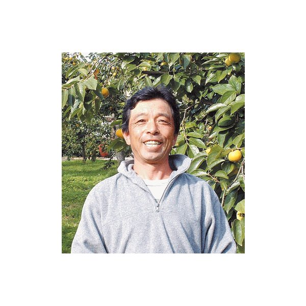 柿 あんぽ柿 会津若松市産「みしらずあんぽ柿」 約800g(12〜16個)|yamagata-kikou|04