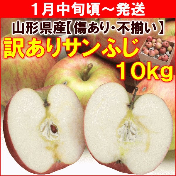 りんご 訳あり サンふじ  山形県産「訳ありサンふじ」 10kg 送料込