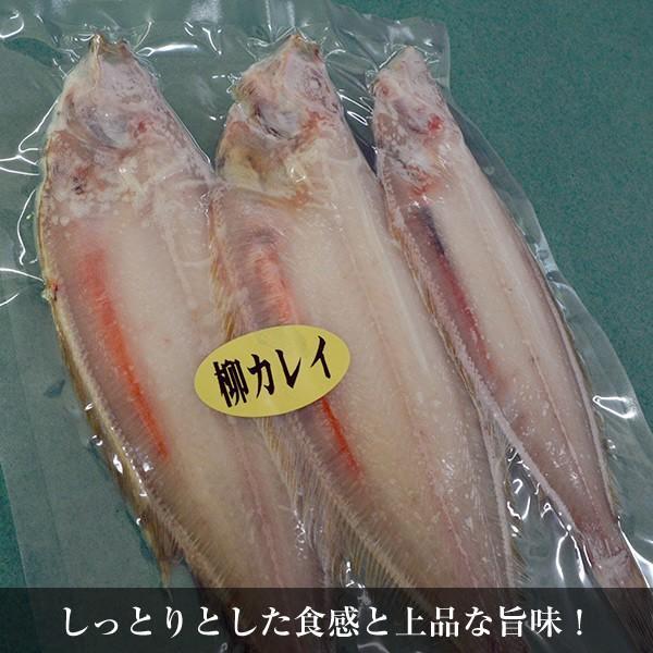 干物・やなぎ・ヤナギカレイ干し(3枚・4パック)|yamakichi|02