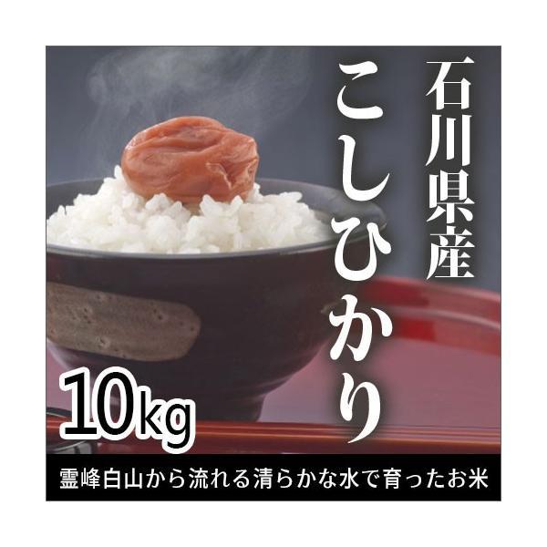 安田商事 令和3年度産 石川県産 こしひかり コシヒカリ お米 精米 白米 10kg