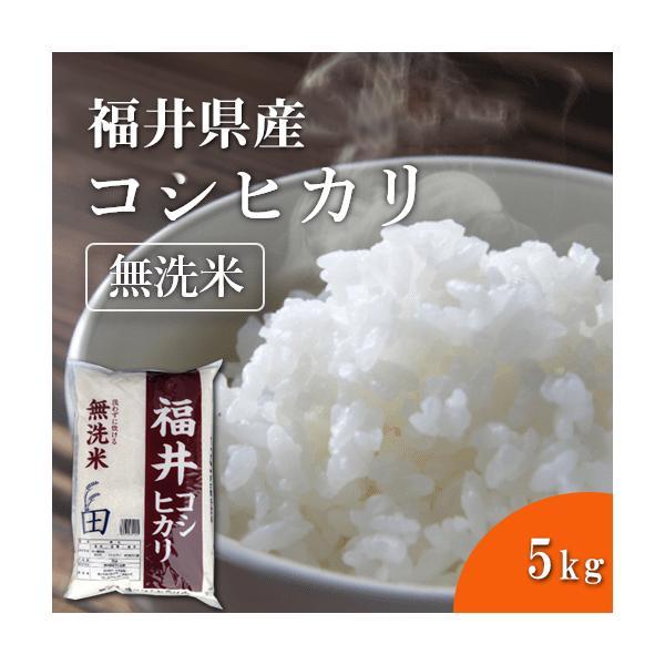 福井精米 新米 令和2年度産 福井県産 コシヒカリ無洗米 こしひかり 精米 5kg