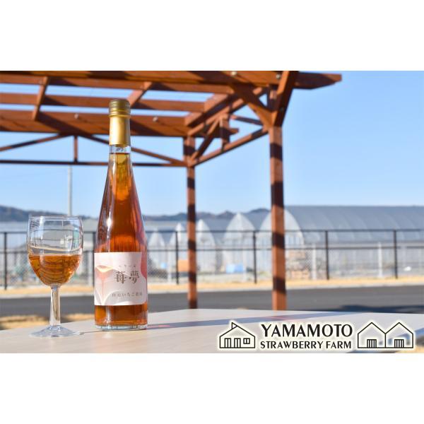 いちごワイン「苺夢(べりーむ)」500ml|yamamoto-ichigo15|04