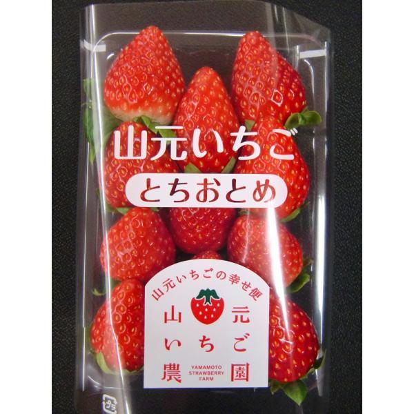 いちご とちおとめ 山元町産 朝摘みいちご4パック|yamamoto-ichigo15|02