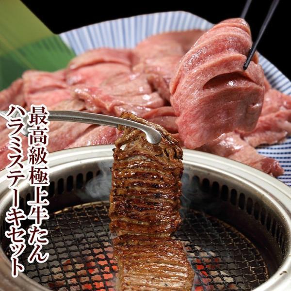 極上牛たん500gとハラミステーキ1kg (K6-026)