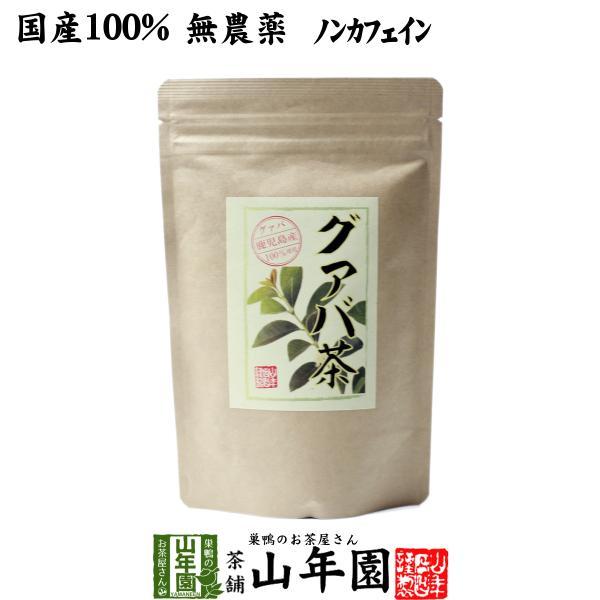 健康茶 国産100% グァバ茶 3g×16パック ティーパック ノンカフェイン 鹿児島県産 無農薬 送料無料