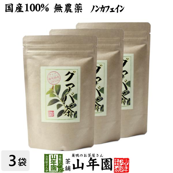 健康茶 国産100% グァバ茶 3g×16パック×3袋セット ティーパック ノンカフェイン 鹿児島県産 無農薬 送料無料