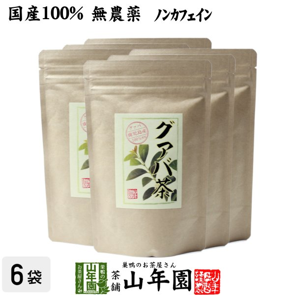 健康茶 国産100% グァバ茶 3g×16パック×6袋セット ティーパック ノンカフェイン 鹿児島県産 無農薬 送料無料