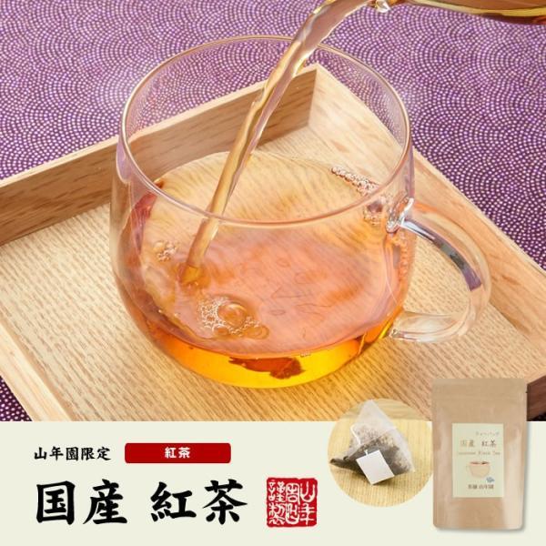 お茶 日本茶 紅茶 国産100% 巣鴨の屋さんの紅茶 2g×15パック×2袋セット ティーパック ティーバッグ 静岡県産 送料無料|yamaneen|02