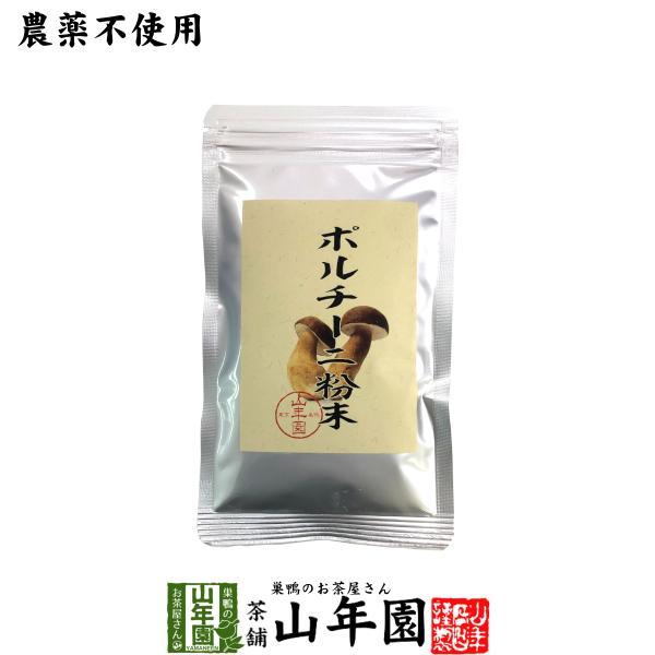 【本場イタリア産無農薬100%】 ポルチーニ茸の粉末 40g 送料無料