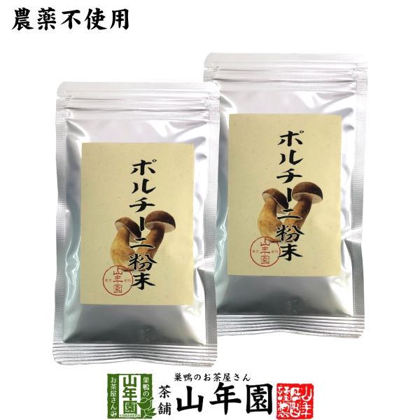 【本場イタリア産無農薬100%】 ポルチーニ茸の粉末 40g×2袋セット 送料無料