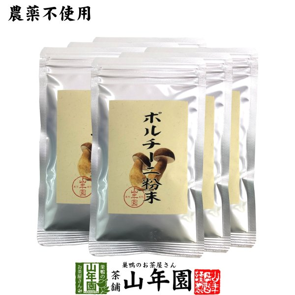 【本場イタリア産無農薬100%】 ポルチーニ茸の粉末 40g×6袋セット 送料無料
