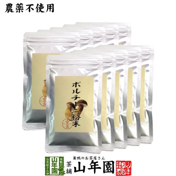 【本場イタリア産無農薬100%】 ポルチーニ茸の粉末 40g×10袋セット 送料無料