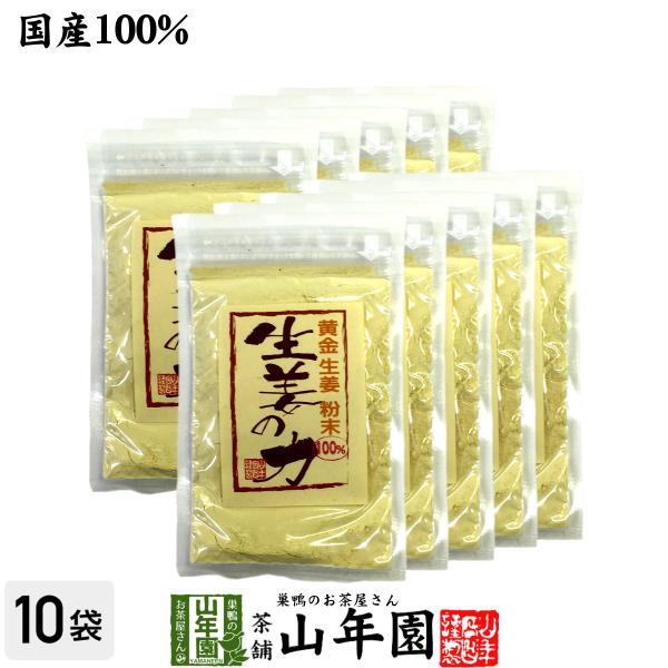 しょうが 粉末 国産 生姜の力 55g×10袋セット しょうが ショウガオール 冷え 温活 送料無料