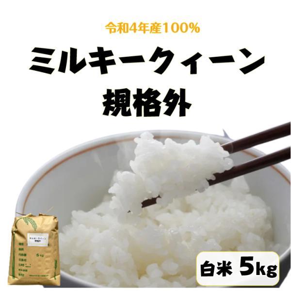 米 5kg「ミルキークイーン中米 白米 5kg」送料無料 令和3年産 100% 新米