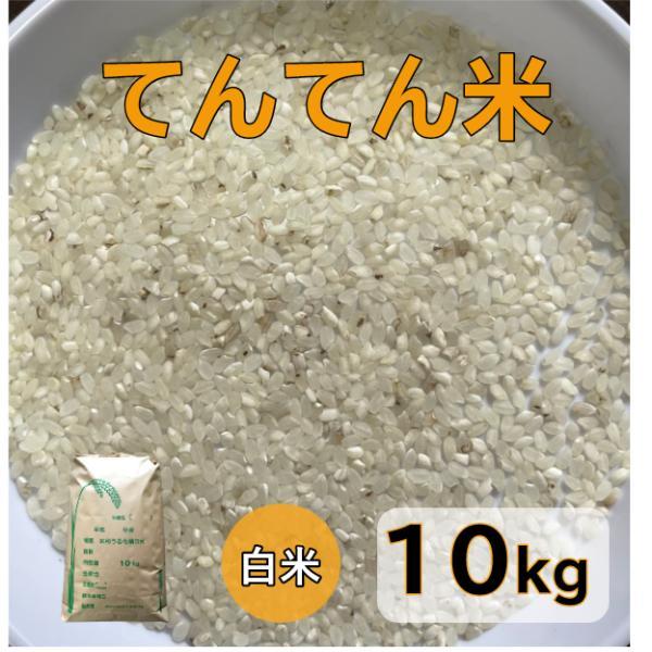 米10kg「秋田てんてん米 白米 10kg」訳あり ブレンド米 送料無料