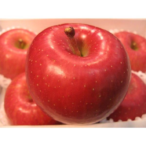 サンふじりんご 中玉サイズ 1個あすつく