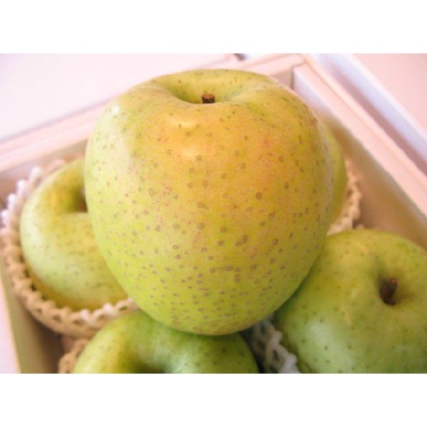 王林りんご 中玉サイズ 送料別商品です。