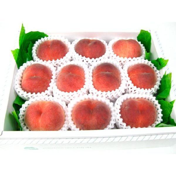 桃ももピーチ もも 10個入り 送料無料商品です。