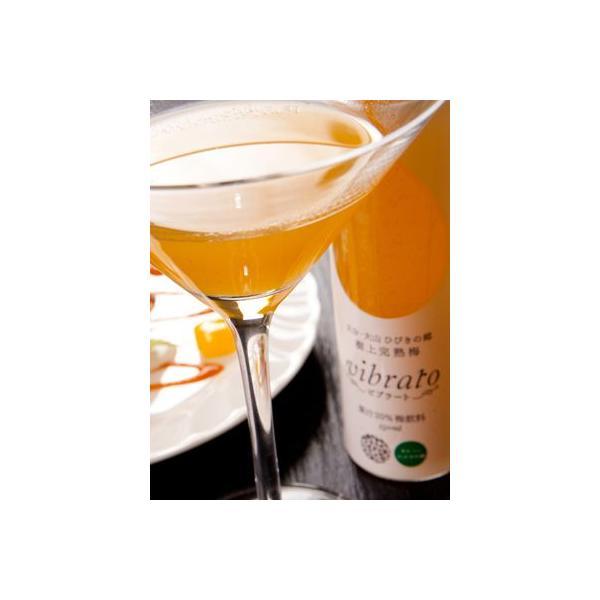 樹上完熟梅ジュース ビブラート(vibrato) 150ml×24本入 果汁20% ANA全日空  国内線機内メニュー採用