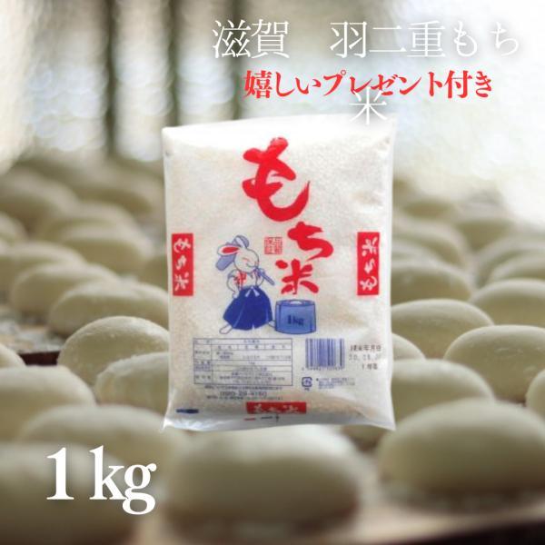 もち米 1kg 滋賀県産羽二重もち米 1kg(7合)令和2年産 【8袋以上購入で送料無料】