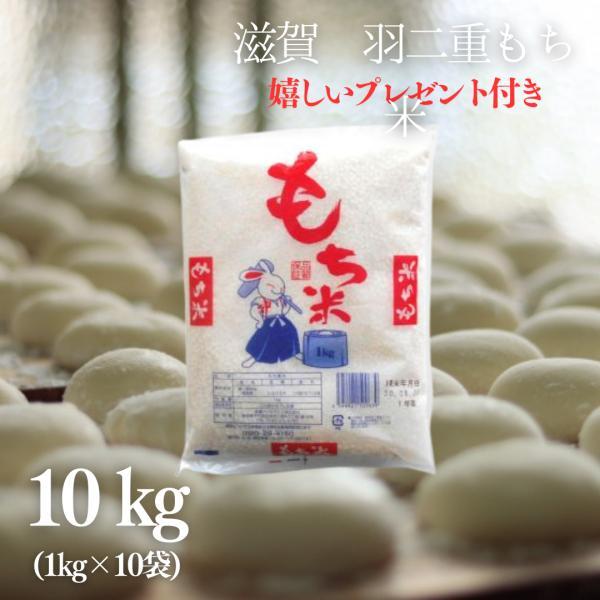 もち米 10kg  滋賀県産羽二重もち米  1kg×10袋 令和2年産