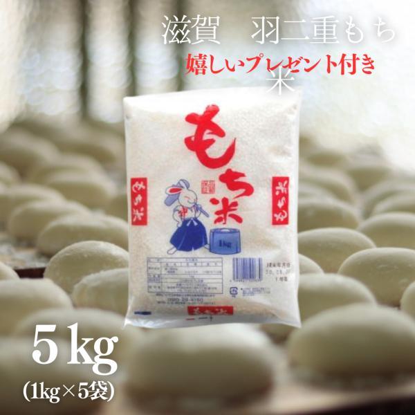 もち米 5kg 滋賀県産羽二重もち米 1kg×5袋 令和2年産 【送料無料】