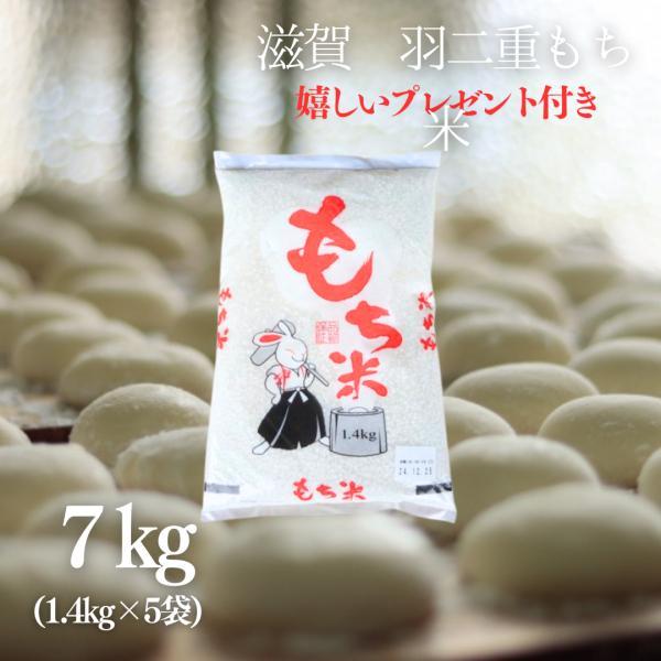 お米 もち米 5升  滋賀県産羽二重もち米7kg(1.4kg×5袋)令和2年産