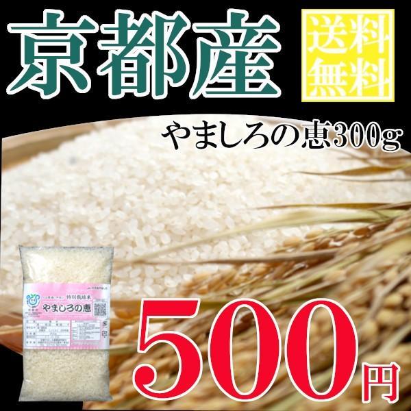 お一人様1点限り うるち米(精白米)  特別栽培米 やましろの恵  京都府山城産ヒノヒカリ  お試しパック300g(郵送)|yamasiro