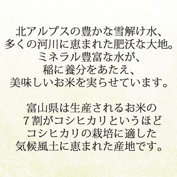コシヒカリ 米 10kg 5kg×2袋 お米 白米 富山県産 うるち米 精白米 ごはん yamatorice 03