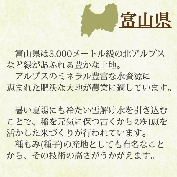 新米 コシヒカリ 米 10kg 5kg×2袋 お米 白米 富山県産 うるち米 精白米 ごはん|yamatorice|05