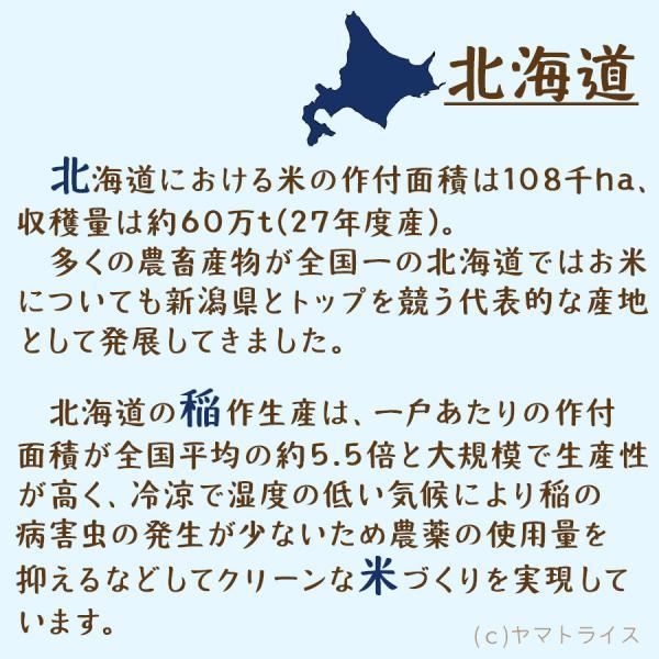 無洗米 5kg×2袋 お米 10kg 米 ななつぼし 北海道産 うるち米 ごはん|yamatorice|04