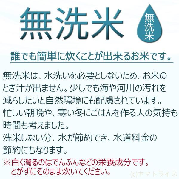 無洗米 5kg×2袋 お米 10kg 米 ななつぼし 北海道産 うるち米 ごはん|yamatorice|07