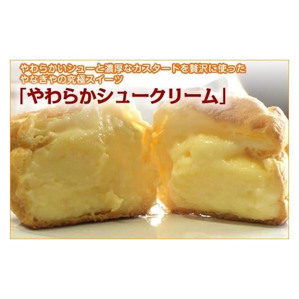 カスタードシュークリーム 10個セット|yanagiyakashi