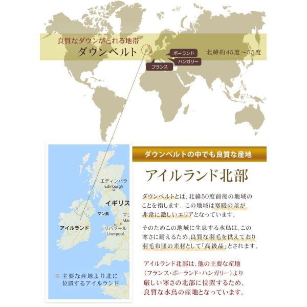 羽毛布団 シングル 掛け布団 日本製 収納 脱臭 防カビ 殺菌 ロイヤルゴールドラベル ダウン率90% シンプル ダウンパワー 400以上 2年間保証|yasashii-kurashi|03