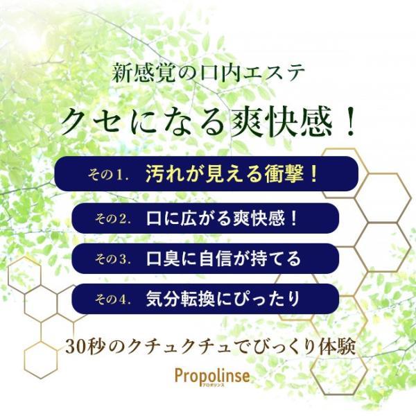 プロポリンス マウスウォッシュ 600ml 4本 洗口液 口臭予防 口臭対策 口内洗浄 口臭ケア|yasashii-kurashi|06