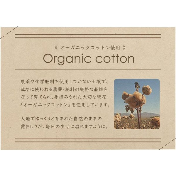 タオル まとめ買い ミニ バスタオル セット 2枚 日本製 綿100% オーガニックコットン 大阪泉州タオル yasashii-kurashi 06