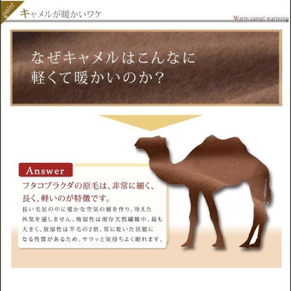 肌掛け布団 シングル 高級 キャメル肌掛け布団 キャメル100% 無臭 ソーラタッチ|yasashii-kurashi|08