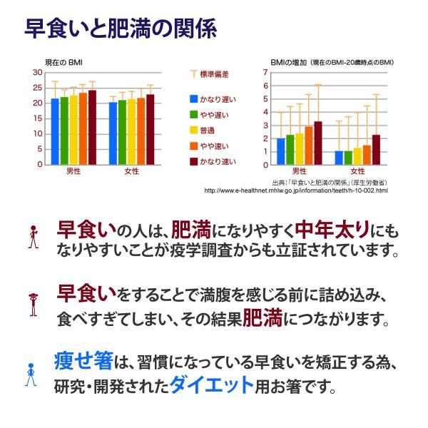 痩せ箸(やせばし) STYMB60 ダイエット 箸 22cm 日本製 マーブルブルー|yasebashi|02