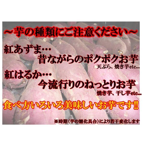 さつまいも(紅あずま) 5kg箱 訳アリ 海風を浴びたあま〜いおいも 茨城県産|yasu-bussan|02