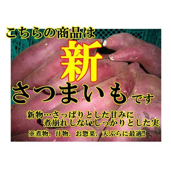 さつまいも(紅あずま) 5kg箱 訳アリ 海風を浴びたあま〜いおいも 茨城県産|yasu-bussan|03