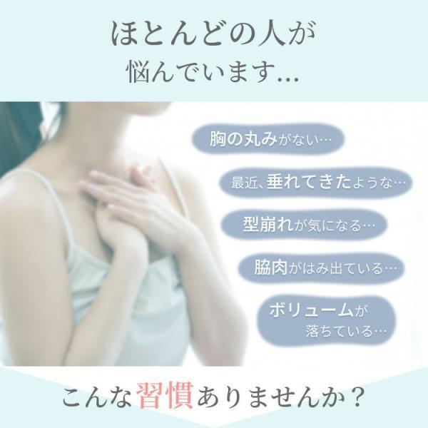 ナイトブラ 育乳 効果 ノンワイヤー 育乳ブラ 大きいサイズ バストアップ ラクブラ24 2枚|yasuizemart|16