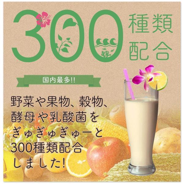 82%OFF 美ら野菜酵素 ぴかぷるスムージー 長寿の国沖縄からお届け 酵素 配合 酵素スムージー ダイエット|yasuizemart|09