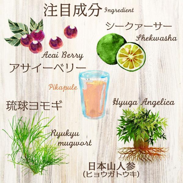 82%OFF 美ら野菜酵素 ぴかぷるスムージー 長寿の国沖縄からお届け 酵素 配合 酵素スムージー ダイエット|yasuizemart|10