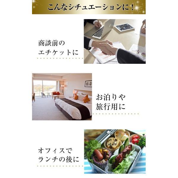 電動歯ブラシ 携帯 音波歯ブラシ ソニックマジック ミニ 2個セット 替えブラシ4本付 軽量|yasuizemart|07