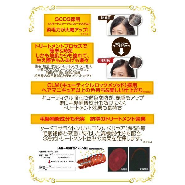 ビアント シラガネーゼ ボタニカルカラートリートメント詰替え用300g|yasuizemart|03
