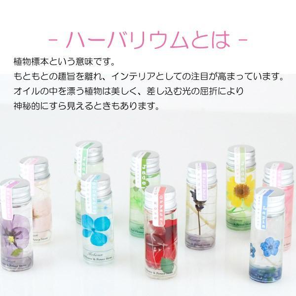 ハーバリウム バラ 香り付き 天然石 花 ガラス 全10種|yasunaga|02