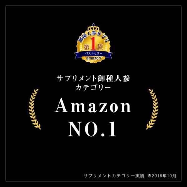 VS.(ヴァーサス) 10本入り|yaziup|02
