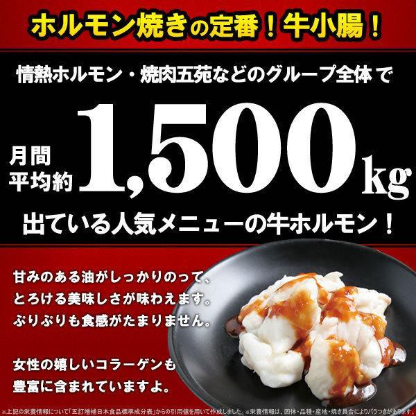 ホルモン 焼肉 牛ホルモン 味噌だれ漬け 200g 情熱ホルモン yhjonetsu 02